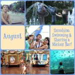 Wordless Wednesday ~ August Calendar Shot!