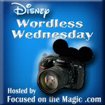 Wordless Wednesday Blog Hop ~ #DisneySide!