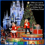 Planning a Holiday Trip to Walt Disney World, or The Line is HOW Long?