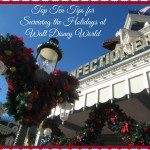 Tips for Surviving the Holidays at Walt Disney World