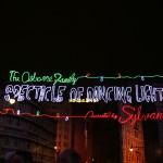 Disney Mamas Fun Fact Friday ~ Osborne Family Spectacle of Dancing Lights