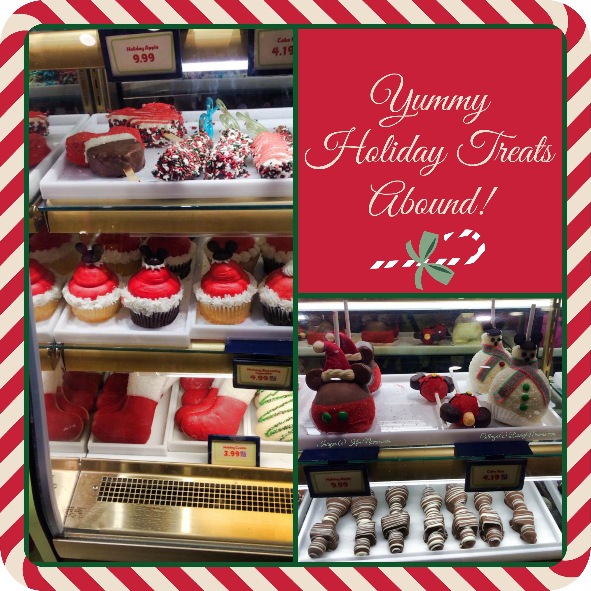 Holiday Treats at Walt Disney World