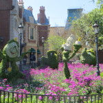 Spending Spring Break at Walt Disney World