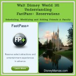 Disney Vacation Basics ~ Understanding FastPass+