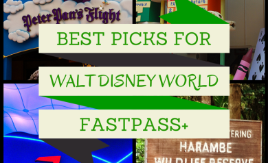 The best attraction choices for your Walt Disney World FastPass+ Picks from DisneyMamas.com