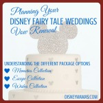 Planning a Disney Fairy Tale Weddings Vow Renewal ~ Options