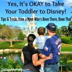 Yes, it's OKAY to Take Your Toddler to Disney!