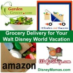 Grocery Delivery for Your Walt Disney World Vacation