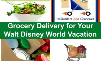 Having groceries delivered for your Disney vacation is a great, money saving option! | Walt Disney World