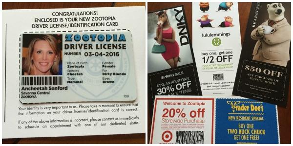 zootopia license