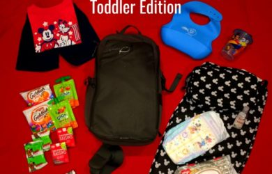 What's in Our Disney Bag | Toddler Edition